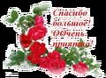 http://sh.uploads.ru/t/9qm61.png