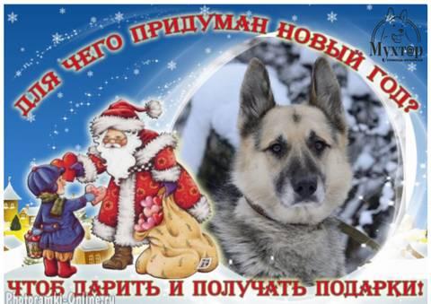 http://sh.uploads.ru/t/9yHaK.jpg