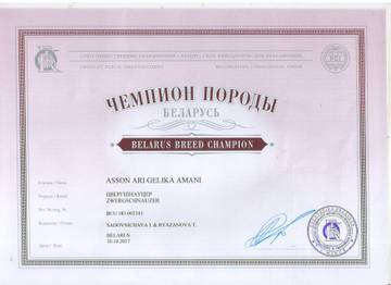http://sh.uploads.ru/t/9yjzv.jpg