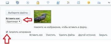 http://sh.uploads.ru/t/AqLOl.jpg