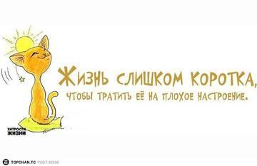 http://sh.uploads.ru/t/Arqdy.jpg