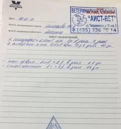 http://sh.uploads.ru/t/Asvbg.jpg
