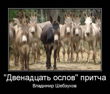 http://sh.uploads.ru/t/BP5C9.jpg