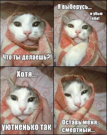 http://sh.uploads.ru/t/Bi7cI.jpg
