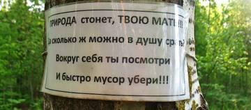 http://sh.uploads.ru/t/BxN7O.jpg