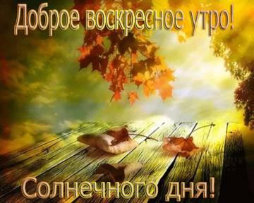 http://sh.uploads.ru/t/C1PmI.jpg