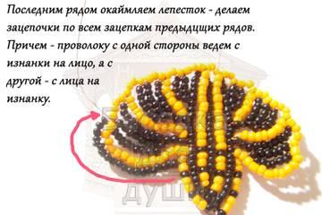 http://sh.uploads.ru/t/CHhyD.jpg