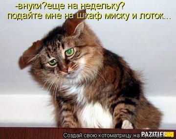 http://sh.uploads.ru/t/D1Fp7.jpg