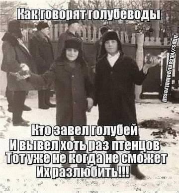 http://sh.uploads.ru/t/DGaA9.jpg