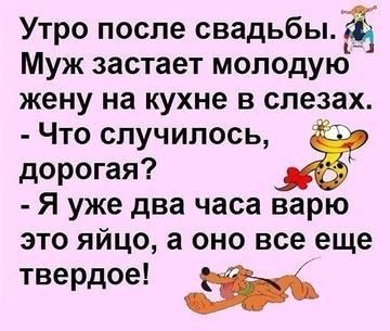 http://sh.uploads.ru/t/DPlVL.jpg