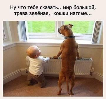 http://sh.uploads.ru/t/DYQGe.jpg