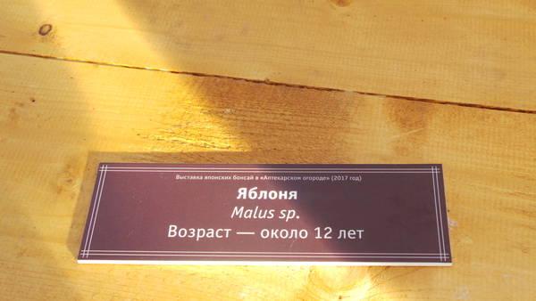 http://sh.uploads.ru/t/DgATk.jpg