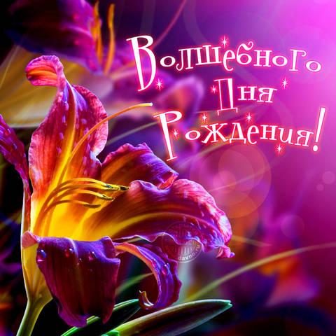 http://sh.uploads.ru/t/EL3k8.jpg