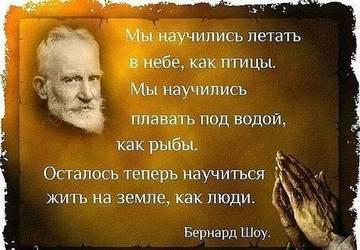 http://sh.uploads.ru/t/EcaJT.jpg
