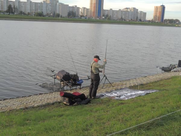 http://sh.uploads.ru/t/EcaSv.jpg