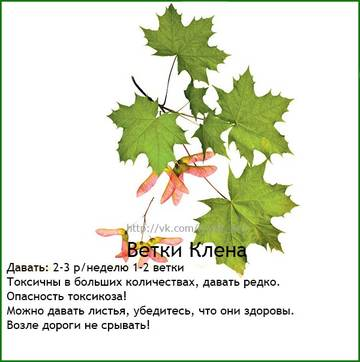 http://sh.uploads.ru/t/Eh8O4.jpg