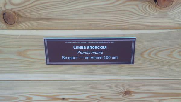 http://sh.uploads.ru/t/EsMkK.jpg