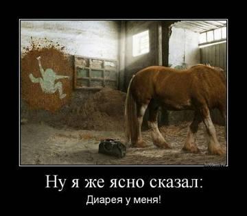 http://sh.uploads.ru/t/EvV8u.jpg