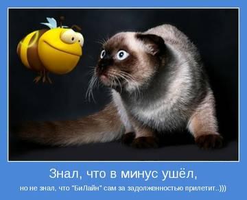 http://sh.uploads.ru/t/EyUje.jpg