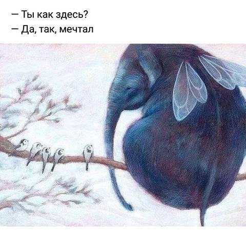 http://sh.uploads.ru/t/FdPrD.jpg