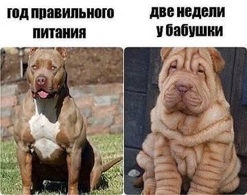 http://sh.uploads.ru/t/FhMoz.jpg