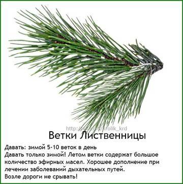 http://sh.uploads.ru/t/Fn4WV.jpg