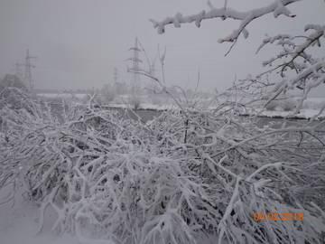 http://sh.uploads.ru/t/Fu8hG.jpg