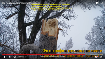 http://sh.uploads.ru/t/G58zC.png