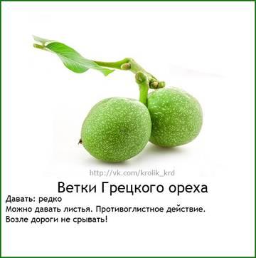 http://sh.uploads.ru/t/HK7B3.jpg