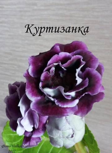 http://sh.uploads.ru/t/HXYNp.jpg