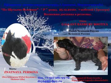 http://sh.uploads.ru/t/HpRgj.jpg