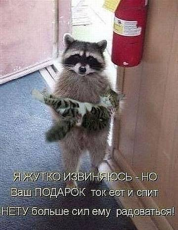http://sh.uploads.ru/t/IgOaJ.jpg