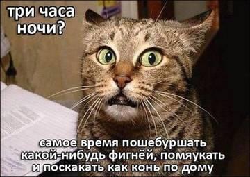 http://sh.uploads.ru/t/IotH0.jpg