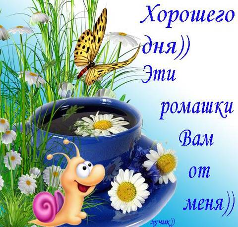 http://sh.uploads.ru/t/Iv4ck.jpg