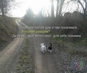 http://sh.uploads.ru/t/Iwau0.jpg