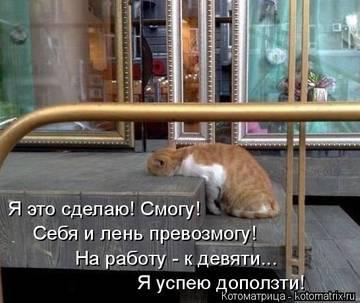 http://sh.uploads.ru/t/J1FtN.jpg
