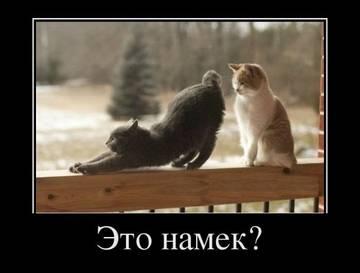 http://sh.uploads.ru/t/JILjk.jpg