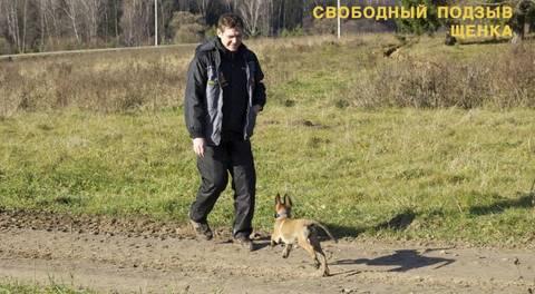 http://sh.uploads.ru/t/JWNHl.jpg