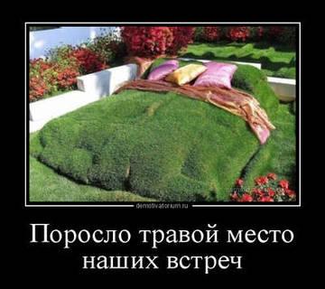 http://sh.uploads.ru/t/Jikxj.jpg