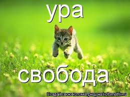 http://sh.uploads.ru/t/Jjz0i.jpg