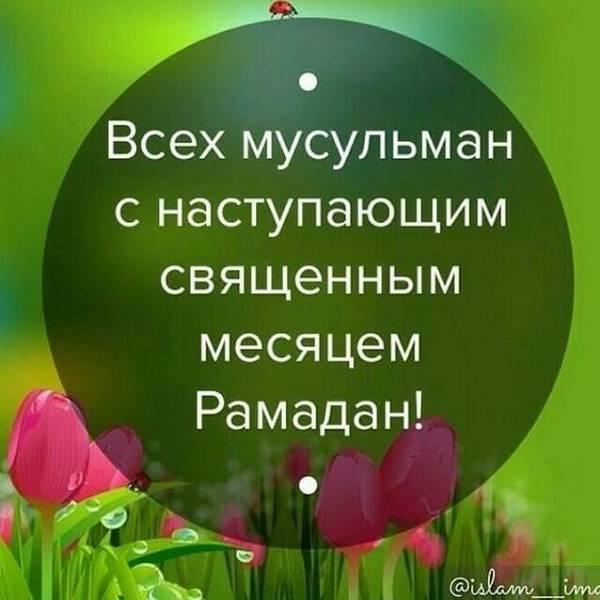 http://sh.uploads.ru/t/JkEp2.jpg