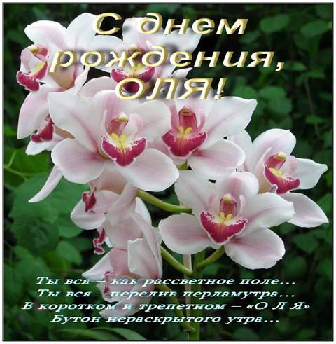 http://sh.uploads.ru/t/Jz10Y.jpg