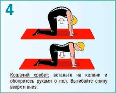 http://sh.uploads.ru/t/JzilP.jpg