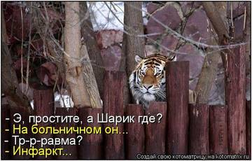 http://sh.uploads.ru/t/K1IlM.jpg