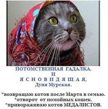 http://sh.uploads.ru/t/K2BkX.jpg