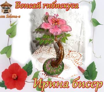 http://sh.uploads.ru/t/K2vR0.jpg