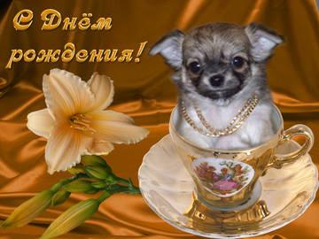 http://sh.uploads.ru/t/K6sig.jpg