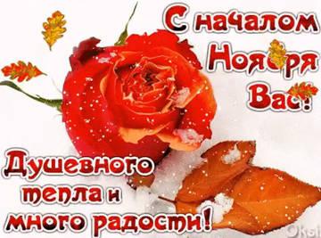http://sh.uploads.ru/t/KT9Gl.jpg