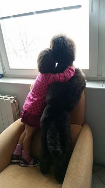 http://sh.uploads.ru/t/KboOk.jpg