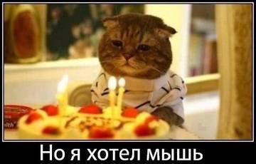 http://sh.uploads.ru/t/KjPLM.jpg